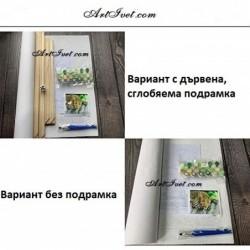 Картина по номера  -ЗАЛЕЗ В ГРАДА