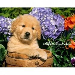 Картина за рисуване по номера - Кученце сред цветята