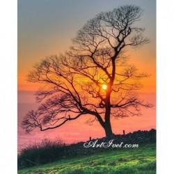 Картина за рисуване по номера - Дървото и цветовете на живота