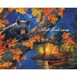Картина по номера - Есента на мечката