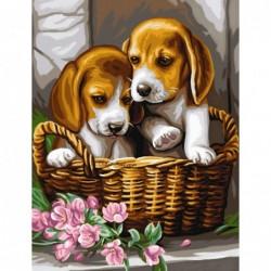 Картина по номера -Кученца бебета в кошница