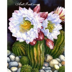 Картина по номера -Цъфнал кактус