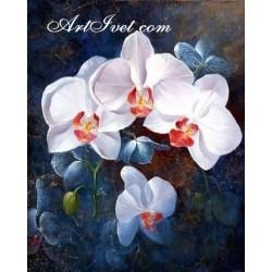 Картина по номера - Бели орхидеи