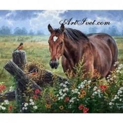 Картина по номера - Кон сред полето