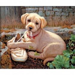 Картина по номера - Кученцето и обувката му
