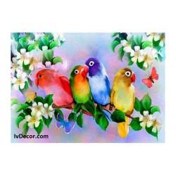 Рисуване по номера - Папагали с цветовете на дъгата