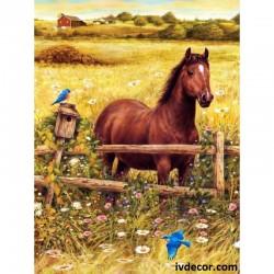 Рисуване по Номера - Кафявият кон и полето
