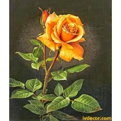 Рисуване по номера - Оранжевата роза - символ на приятелството преминало в любов